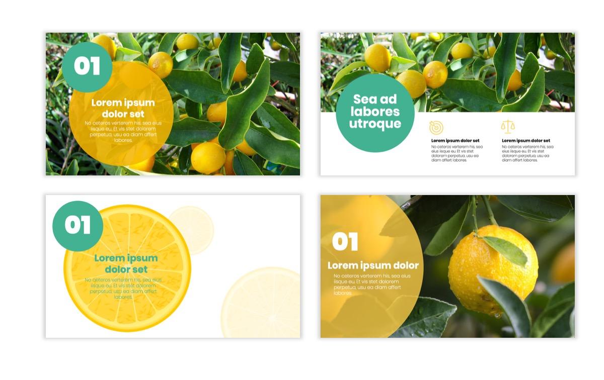 Circles PPT Template - Professional - Lemon - Yellow - Green - Business - Professional Slide2