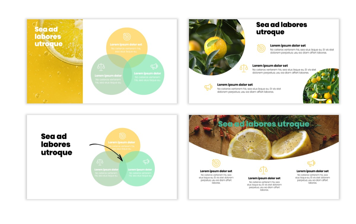 Circles PPT Template - Professional - Lemon - Yellow - Green - Business - Professional Slide6