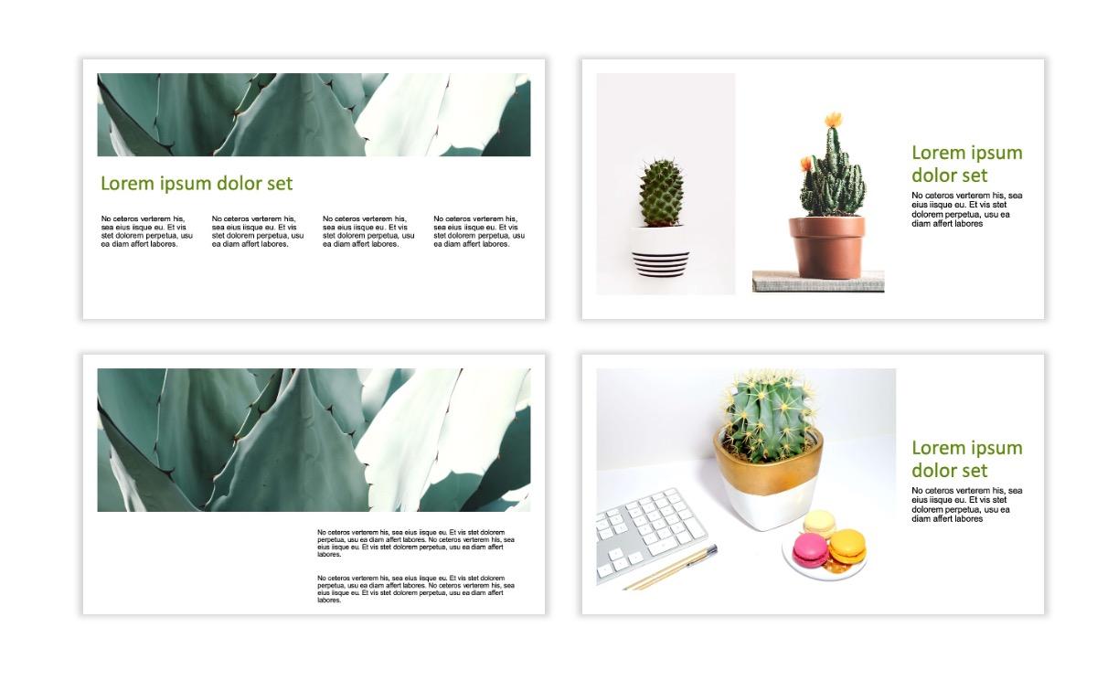 ROME - Green - Aesthetic - Clean - Minimal Slide 4