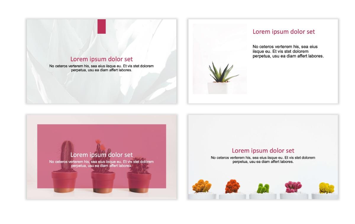ROME - Pink - Aesthetic - Clean - Minimal Slide 2
